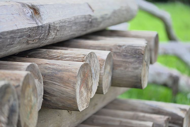 Madera Palo Bois Madera Wood - Material No People Focus On Foreground Log Timber Stack Firewood Deforestation Large Group Of Objects Close-up Tree Wood Day Nature Outdoors