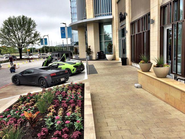 Lamborghini McLaren