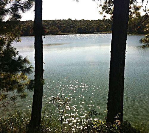 Water Reflections Chiapas Montebello