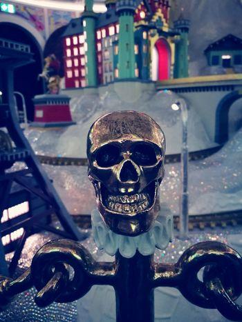 Human Skeleton Human Body Part Svarovski Svarovski Elements ınnsbruck Museum