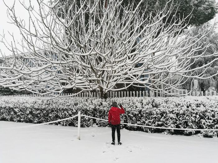 Rear view of man standing on snow covered field