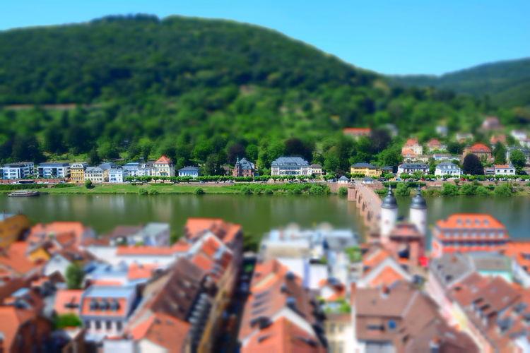 Karl-theodor-brücke Alte Brücke Heidelberg Architecture Built Structure Neckar River River Tilt Shift Effect Water