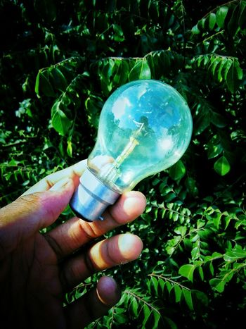 Creative Photography Mobilephotography Mobile Photography Right Hand Bulb Bulbphotography Bulb Light Terrace Leaves EyeEm Selects My Hand  One Person People Close-up Adult Real People Outdoors Only Men Adults Only One Man Only Day EyeEmNewHere