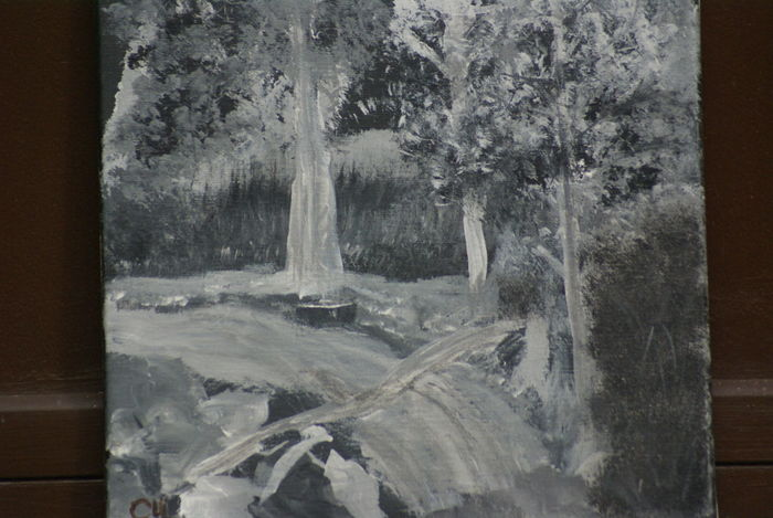 12x12 acrylic painting by cheri for sale by cheri'sartwork. gray scale study Acrylic Painting Gray Scale Close-up Day Nature No People Outdoor Scene Water Waterfall #water #landscape #nature #beautiful