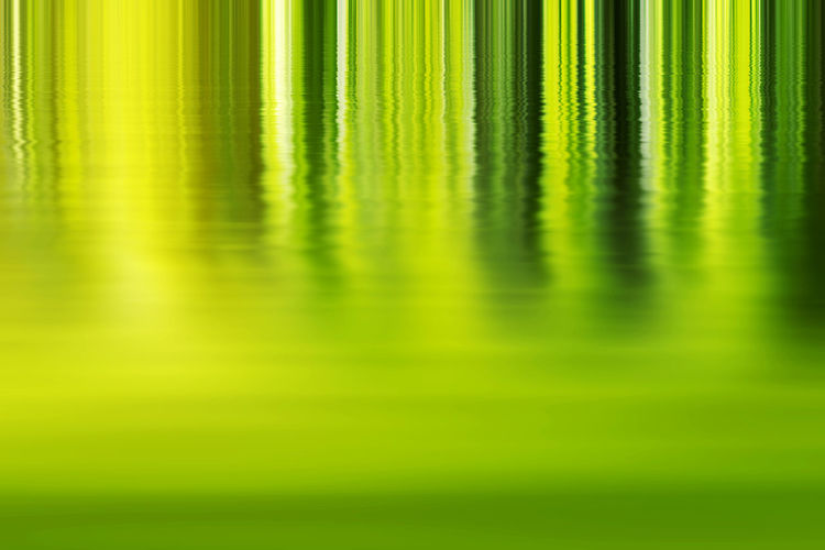 Shadow and Light - Abstract green Background Abstract Backgrounds Beauty In Nature Close-up Defocused Full Frame Green Background Green Background Plant Agriculture Green Color Light - Natural Phenomenon Nature No People Outdoors Plant Reflection Selective Focus Sunlight, Shades And Shadows Sunlight, Sunrise, Sunset, Sun,. Yellow