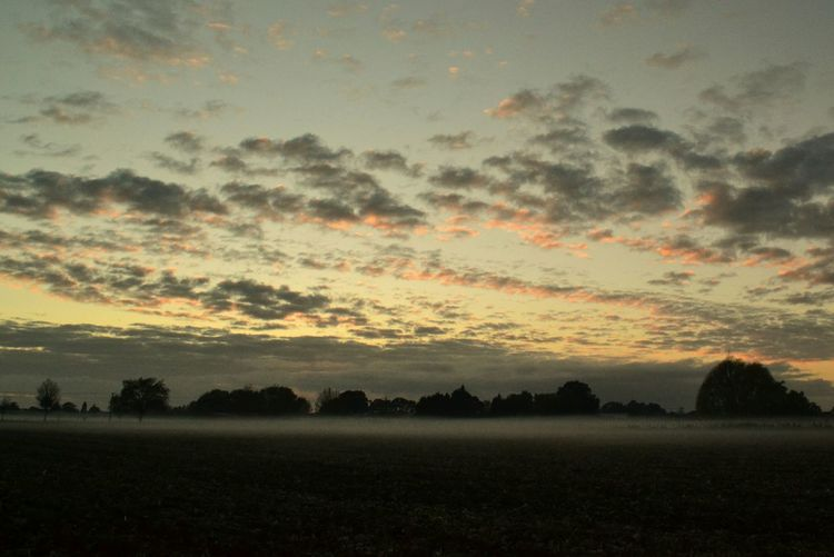 Early Morning Sunrise_Collection Misty Morning Mistydawn Sky And Clouds Light And Shadow Turn Your Lights Down Low