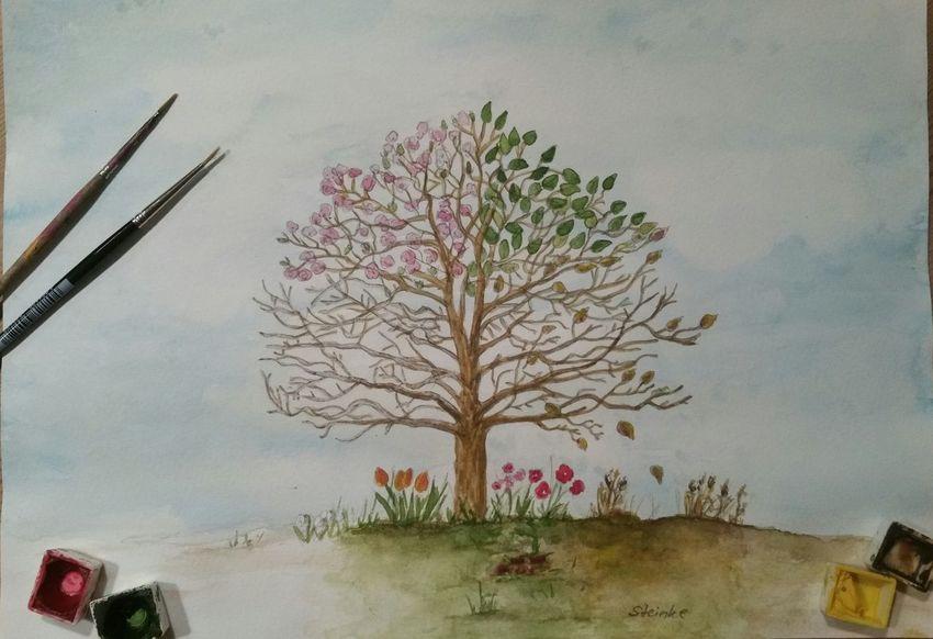 Vier-Jahreszeiten-Baum / 4 seasons tree Seasons Malerei Watercolor Painting Aquarelle Paint Baum Jahreszeiten Aquarellmalerei Kunst Tree Naturelovers Natur Nature Art ArtWork Art, Drawing, Creativity