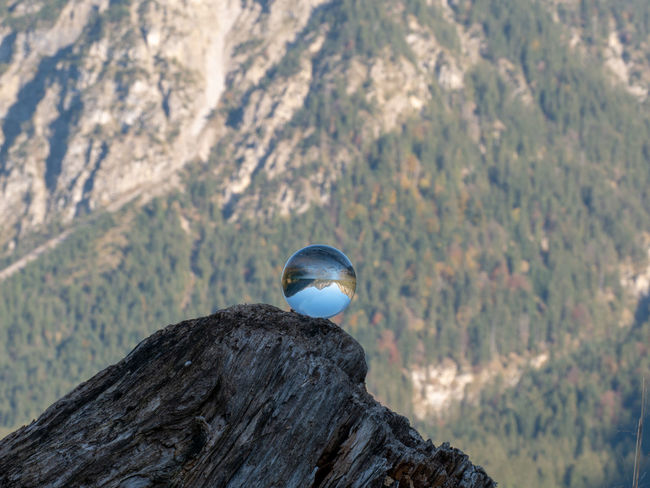 Mountain Tree Nature Day Rock Beauty In Nature Plant Rock - Object Environment Scenics - Nature No People Focus On Foreground Mountain Range Outdoors Sphere Solid Crystal Ball Landscape Tranquility Ball