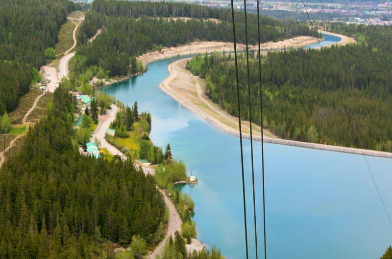 High angle view of lake along trees