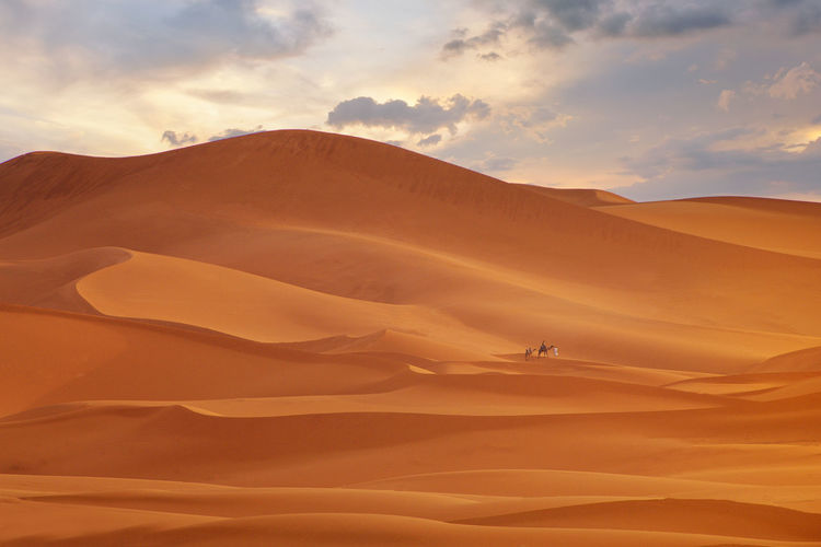 Zahara desert during sunset,morocco