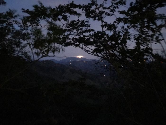 This is the Moon in a Moonset At Sunrise when I saw it I just left my car and try to shoot it with my phone but It was kinda imposible. And finally this was the result. Tree Shadow Sky Mountain ACOSTA