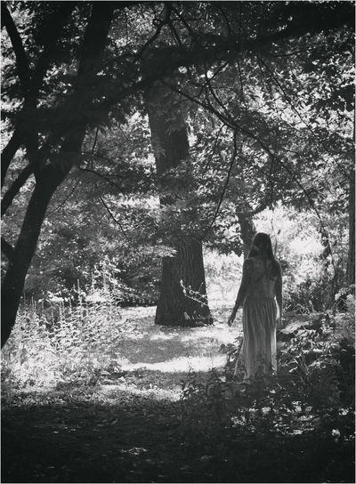 Fairytales & Dreams Black And White Lonley Girl Nature Walk In The Woods Woods