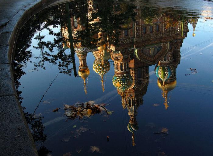 My Saint-Petersburg
