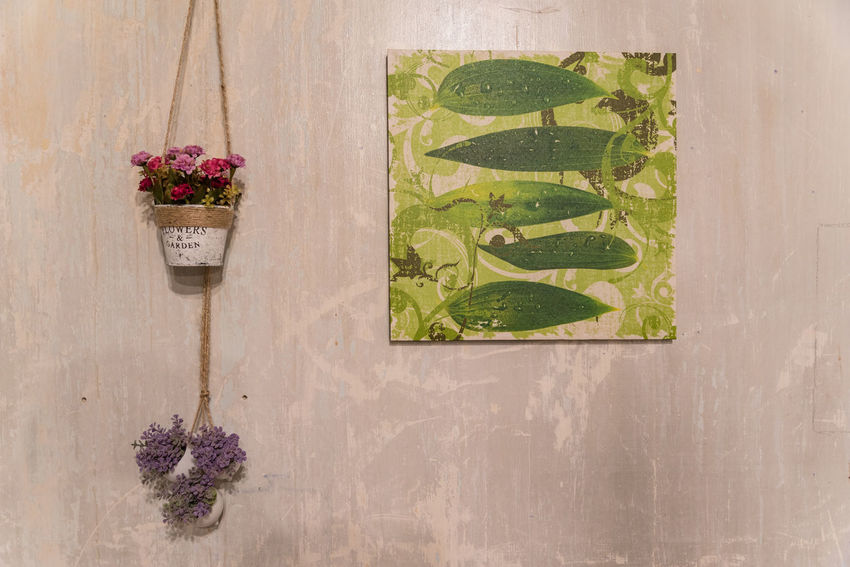 Wall decoration. Background Close-up Day Decoration Flower Freshness Indoor Interior No People Outdoors Pot Wall Decoration Wallpaper