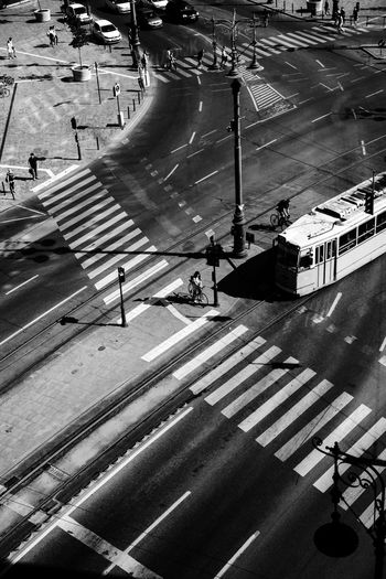 Tram Black & White Cycle Cycling Zebra Crossing Transportation High Angle View Day Men Road Real People City Outdoors People