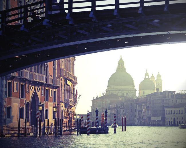 bridge in Venice Italy called Ponte della Accademia and the Church of Madonna della Salute with vintage effect Basilica Church Effects Instagram Effects Ponte Accademia Venezia Venice, Italy Wooden Bridge Architecture Brdige Building Exterior Built Structure Dome Effect Fog History Madonna Della Salute Place Of Worship Ponte Dell'Accademia Travel Destinations Venice Vintage Vintage Effect