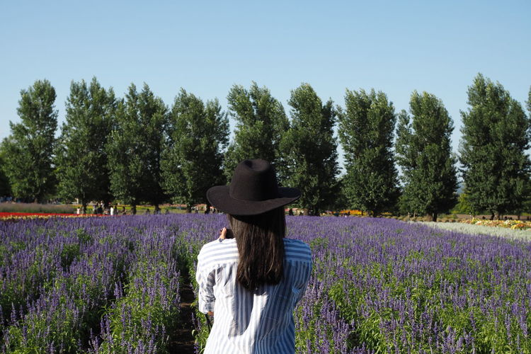 Rear view of woman standing by lavender field against trees