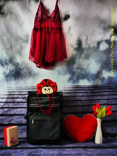 the power of love... Love The Power Of Love On A Date Red Representation Toy Flowering Plant Art And Craft Textile Nature Creativity Table Flower Indoors  Clothing Wall - Building Feature Celebration Romantic Beauty Perfect Perfect Day For Photography HelloEyeEm Hello World