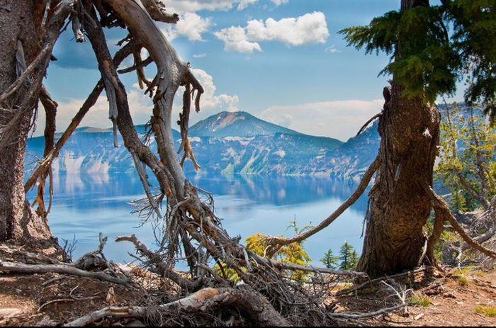 Été Foret Bois Lac Montagnes