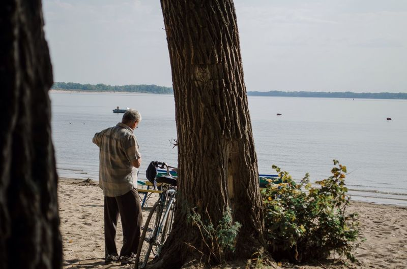 Rear view of man standing by tree trunk at beach against sky