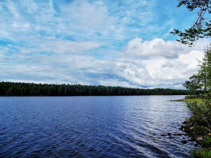 Tree Nature Cloud - Sky Wilderness Sky Lake Water Landscape Forest Beauty In Nature Scenics Outdoors Freshwater Wetland No People Natural Parkland Day Nature Dramatic Sky Beauty In Nature Karelia карелия