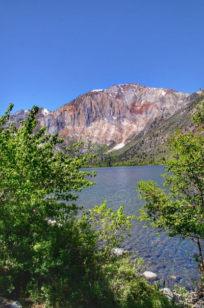 Convict Lake, CA Mountain Water Plant Sky Scenics - Nature Beauty In Nature Tranquil Scene Tranquility Tree Clear Sky Nature No People Growth Day Blue Lake Mountain Range Non-urban Scene Idyllic Outdoors
