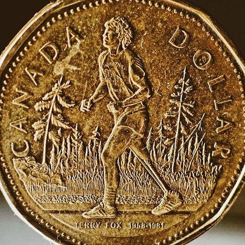 TerryFox NeverForget Running Canada Cancer Cancerawareness Amputee Marathon Athlétisme ..... Notrobocop