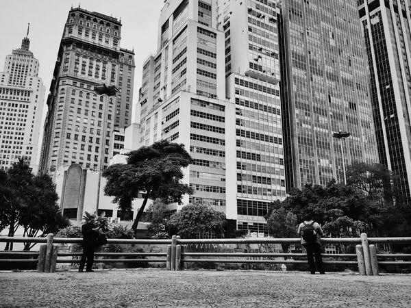 São Paulo Brazil Sampa Streetphotography Saopaulowalk Fotografiaderua Anhangabau Streetphotographer Urban Cityscapes