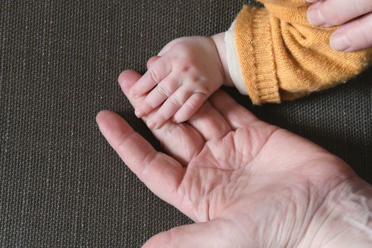 Adult hand and baby hand touching Human Hand Baby Hand Adult Hand Human Body Part Bonding Human Finger Babyhood Finger Child Baby Real People Hand Unrecognizable People Indoors  Close-up Touching Togetherness Love Body Part