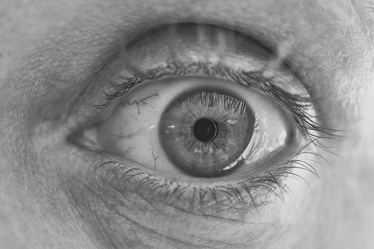 Body Part Close-up Extreme Close-up Eye Eyeball Eyebrow Eyelash Eyelid Eyesight Human Body Part Human Eye Human Face Human Skin Iris - Eye Macro Men One Person Real People Selective Focus Sensory Perception Skin Unrecognizable Person