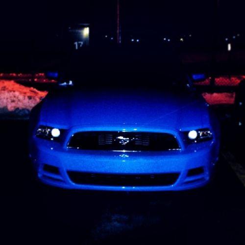 Mushtang Blue Awesome