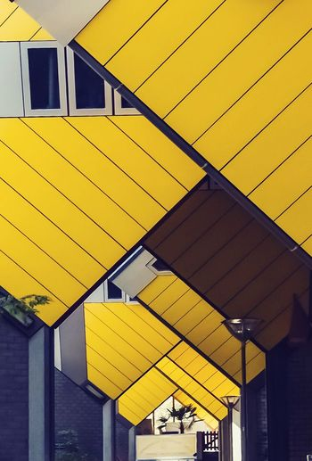 Paint The Town Yellow Cubic houses Rotterdam Yellow Built Structure Architecture Building Exterior No People Outdoors Cubic Houses Rotterdam
