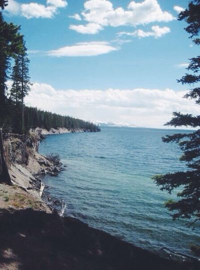 Ynp Yellowstone Lake