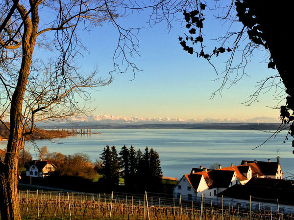 Architecture Bare Tree Beauty In Nature Bodensee Bodenseekreis Bodenseeregion Branch Building Exterior Built Structure Day Horizon Over Water Nature No People Outdoors Scenics Sea Sky Sunset Tranquil Scene Tranquility Travel Destinations Tree Water
