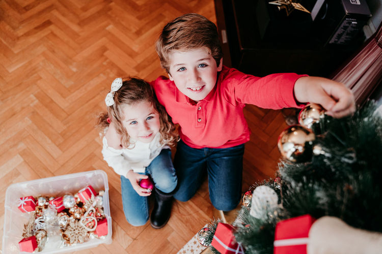 Portrait of cute smiling siblings decorating christmas tree