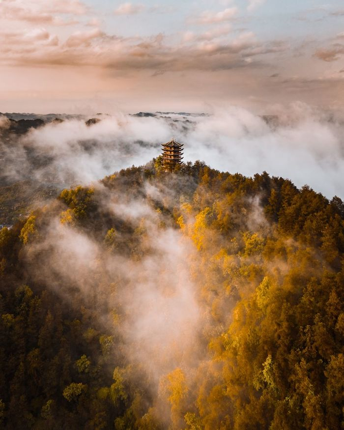 High angle view of tree mountain during foggy weather
