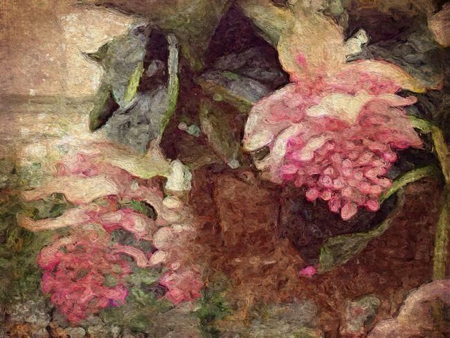 NEM Painterly Flowerporn No Edit No Fun Garden