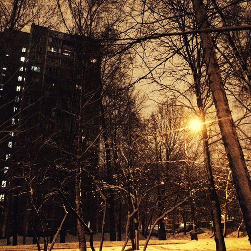 Snow Winter Night Urban