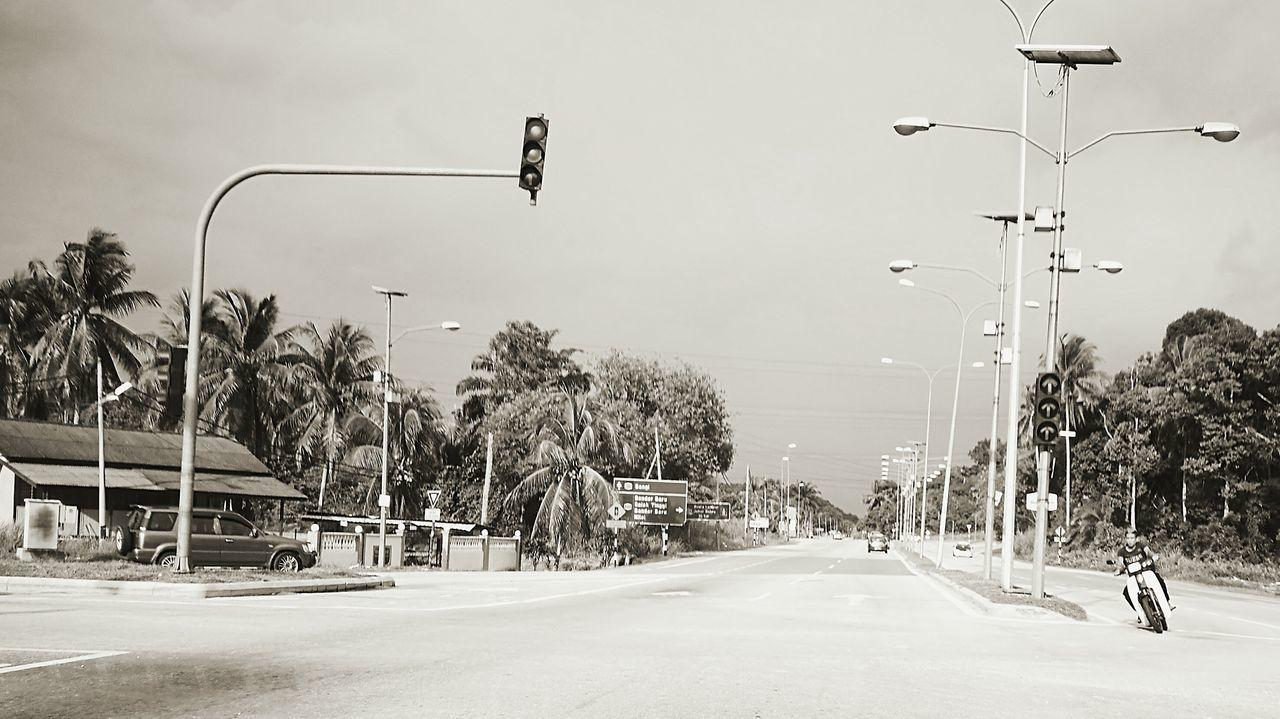 street light, road, transportation, palm tree, the way forward, tree, outdoors, car, day, nature, sky, no people, overhead cable car, city