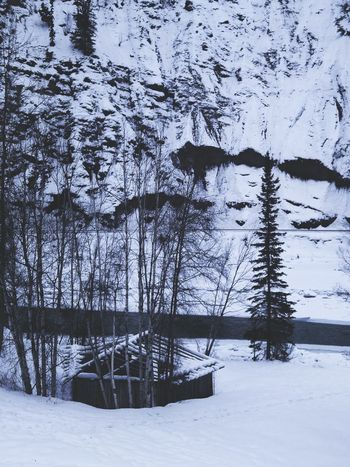 Trees Cabin Cabin In The Woods River Rivers Winter Nature Sombre Beautiful Mountains Rustic Abandoned Abandoned Places Forgotten Wild Rocky Mountains Still Life Calm Magick Cool Tree Ominous Naturephotography