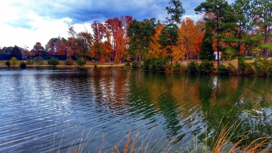 Flaming Leaves on the Water (in HDR) -- wanna see the non-hdr version of this? Visit me @simplepoetography. ✌ Hdr_Collection Hdr Edit Autumn Autumn Colors Autumn🍁🍁🍁 Autumn Leaves Changing Leaves Leaves Tree Trees Water Water_collection Water Reflections Reflection Sky Cloud - Sky Clouds And Sky Nature Beauty In Nature EyeEm Nature Lover No People Outdoors Growth Day