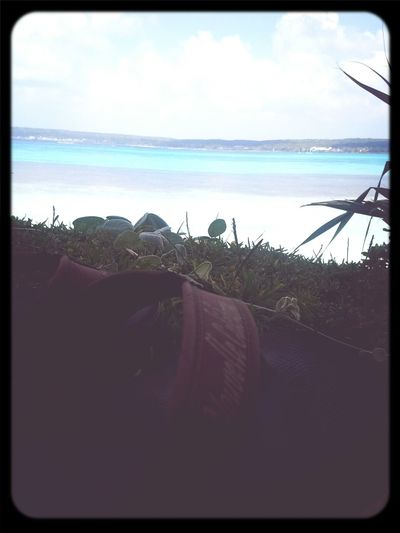 Lifou 2014 New Caledonia Sea View Lifou Beach
