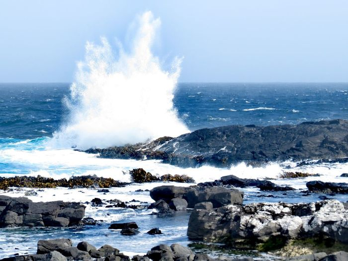 crashing waves Sub Antarctics Auckland Islands Enderby Island Sea Water Beach Motion Power In Nature Sand Blue Wave Outdoors Nature No People Day Beauty In Nature