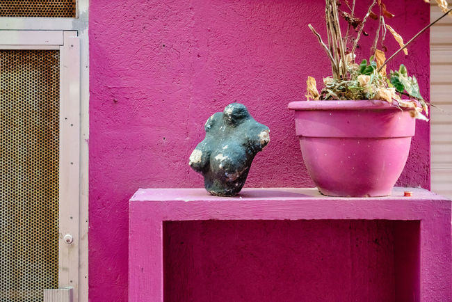 Grid Pink White Frame Architecture Art And Craft Bust  Creativity Day Decoration Flower Pot No People Pink Color Plant Potted Plant Sculpture White White Door