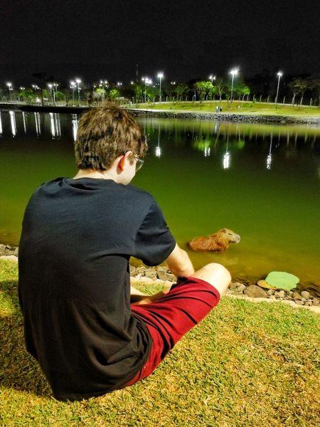 Night Water Animals Capivara Cuiabá Matogrosso Parquedasaguas