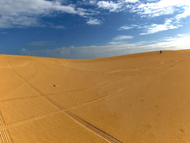 Tire tracks in the desert Sky Land Cloud - Sky Sand Desert Scenics - Nature Climate Arid Climate Tranquil Scene Landscape Sand Dune Tranquility Nature Environment Non-urban Scene Day Brown Beauty In Nature Horizon Remote No People Outdoors Tire Track Lane Lonely Person