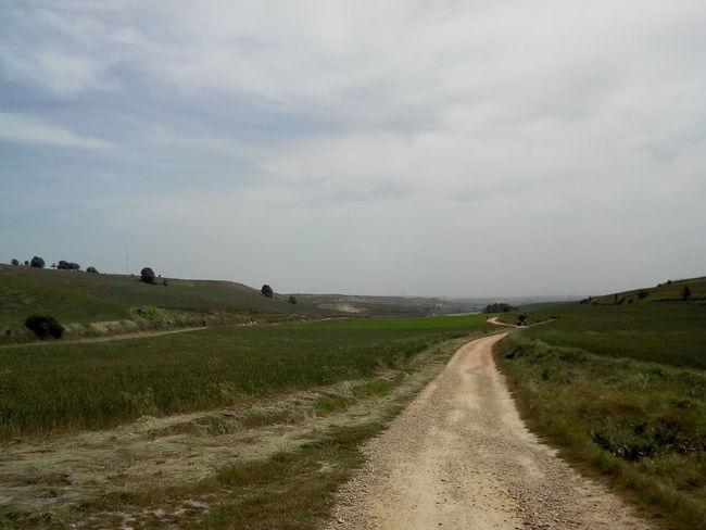 2014 CaminodeSantiago El Camino De Santiago Empty Himmel Jakobsweg Leer Pilgern Pilgrimage Road Sky Sommer Summer Way Way Of Saint James Weg