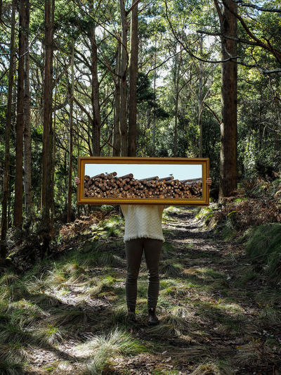 Low section of person holding picture frame in forest