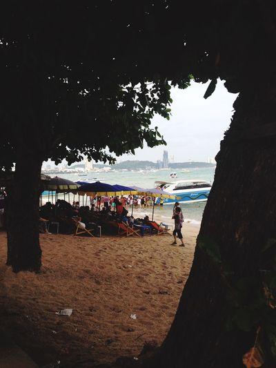 Enjoying The Sun Sunshine Sea