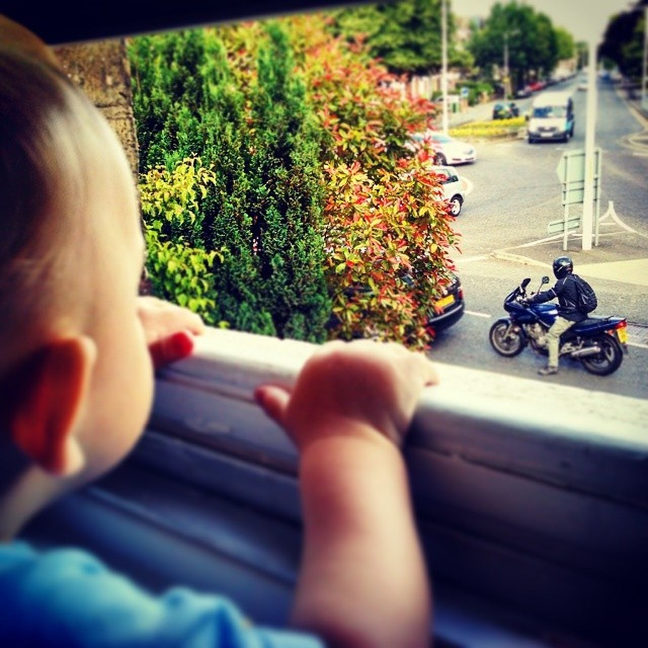 transportation, mode of transport, land vehicle, selective focus, car, road, real people, autumn, street, day, outdoors, childhood, one person, tree, motorcycle, close-up, people